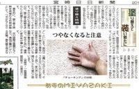 宮崎日日新聞掲載コラム