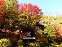うかい鳥山(東京都八王子市)