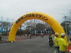昨日「西都このはなマラソン」に参加してきました
