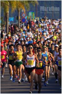 つわぶきハーフマラソン&車いすマラソン Ⅱ