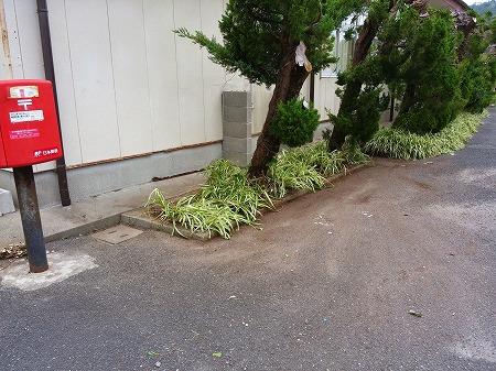 花壇after