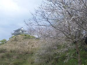 下から見た松尾城