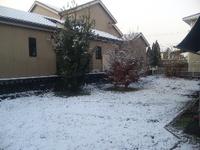 大晦日の初雪