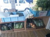 テラスで野菜販売