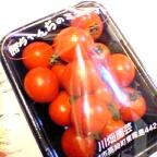 勝ちゃんのミニトマト
