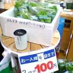 エムエスバイオの野菜