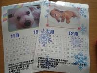 カレンダープレゼント☆