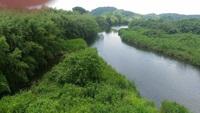 川の流れ。。。