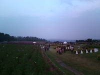 ナイトコスモス生駒高原